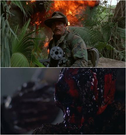 Predator montage