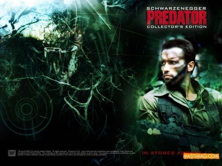 predator310241