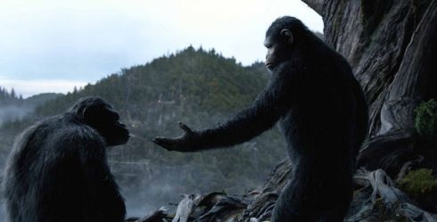 dawn of the planet of the apes caesar koba