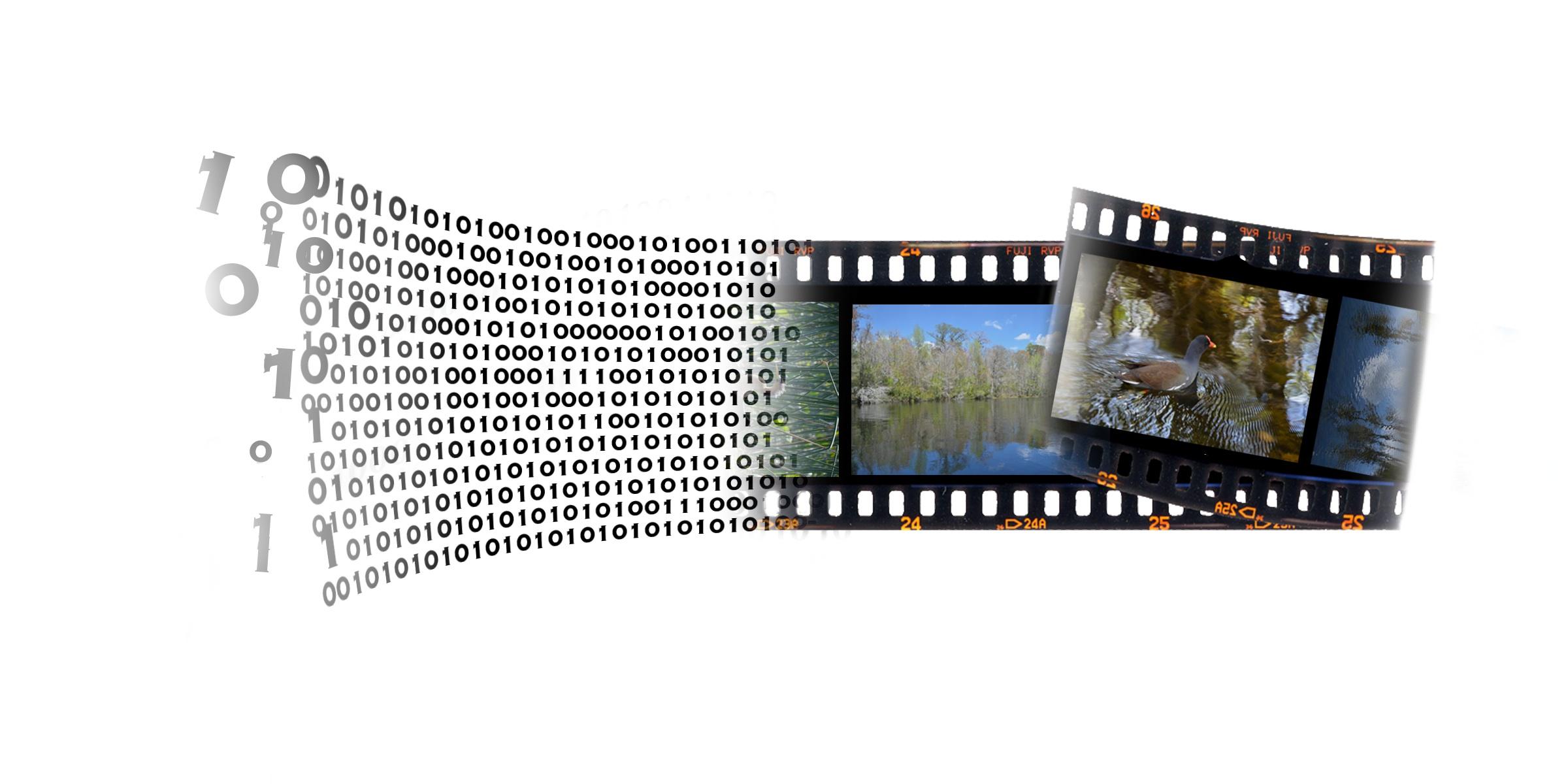 film vs digital debate How tech has shaped film making: the film vs digital debate is put to rest rss subscribe how tech has shaped film making: the film vs digital debate is put to rest entertainment january 14, 2018 bruce1658 0.