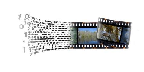 Digital-or-Film